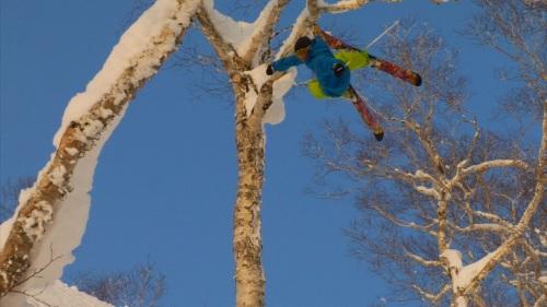Matt Phillipi's Tree Tap