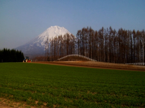 under the shadow of Mt. Yotei