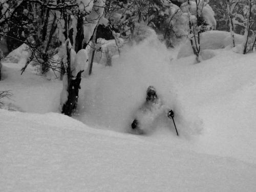 Shunichiro Kikuchi in the february deep