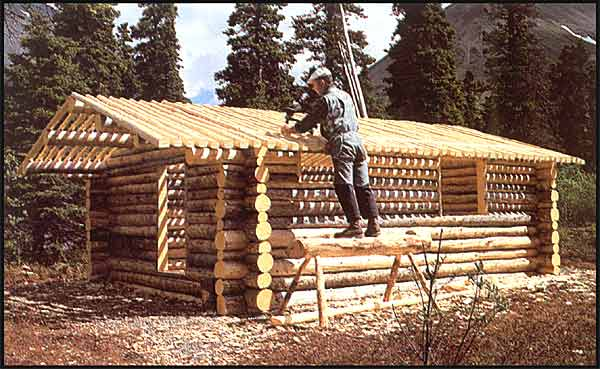 Download Wood Cabins Designs Plans Diy Lathe Wood Projects